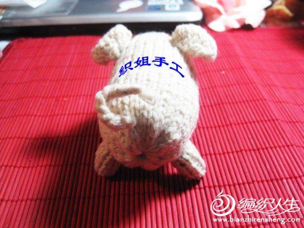 织姐手工--针织小猪 (5).jpg