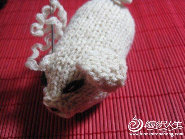 织姐手工--针织小猪 (11).jpg