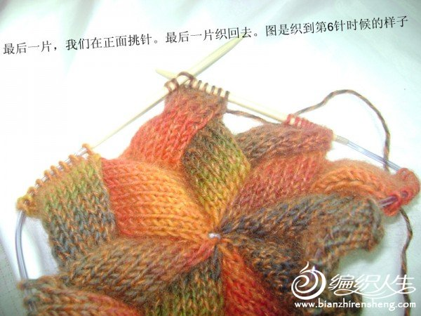 漂亮海浪花的帽子详细教程_编织人生论坛