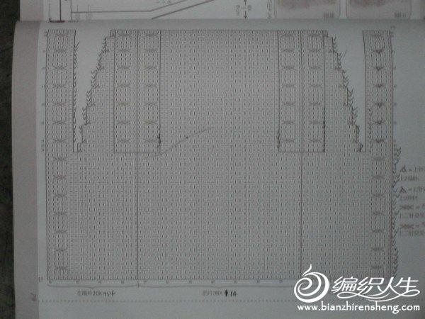 SDC10006.JPG
