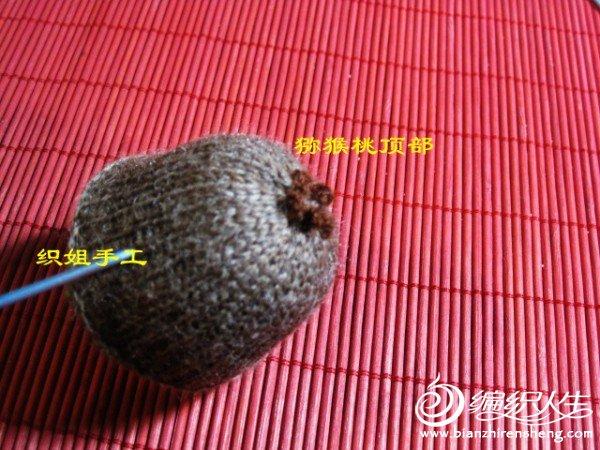 织姐手工--针织猕猴桃 (2).jpg