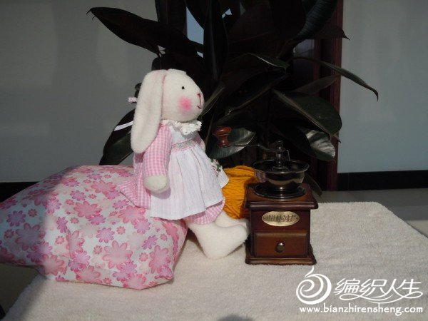 兔兔.JPG