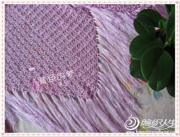 紫贝壳4.jpg
