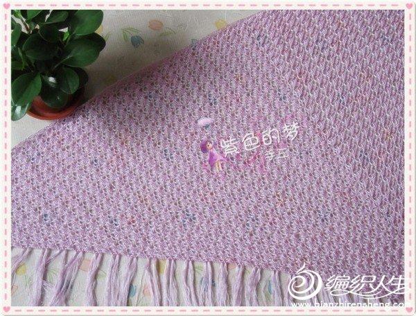 紫贝壳5.jpg