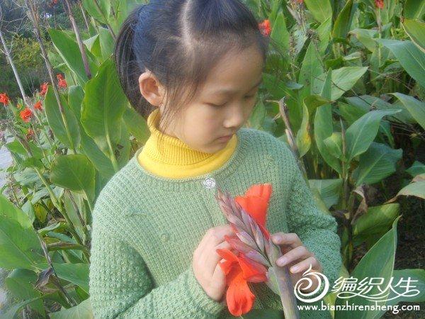 人们鲜花相映红