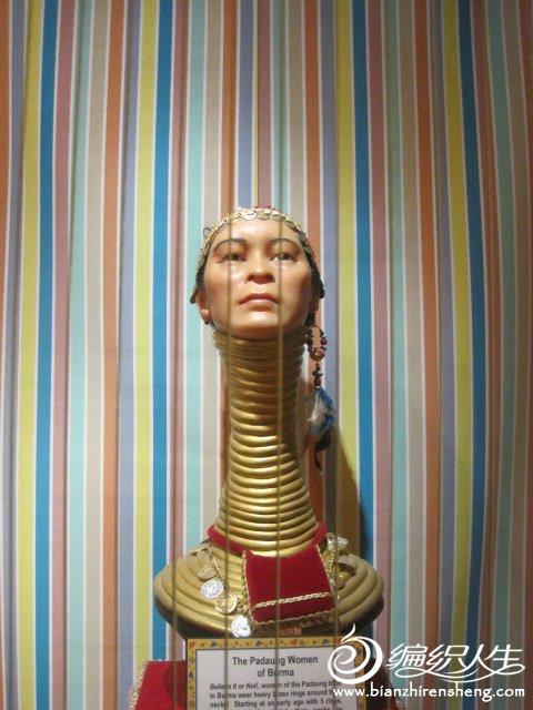 佛罗里达博物馆 中国长颈人2.jpg