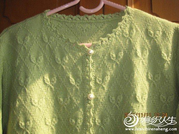 绿色蝴蝶照片 002.jpg