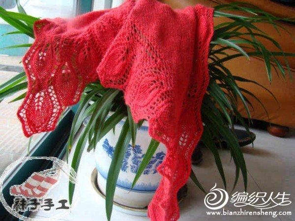 大红藕.jpg