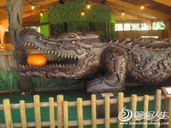 织姐拍摄--佛罗里达某鳄鱼馆里.jpg
