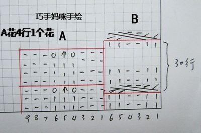 图前花图-.jpg