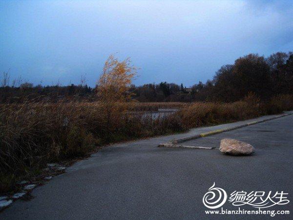 织姐拍摄--安大略湖畔的傍晚, (11).jpg