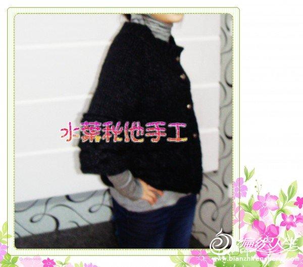 DSC03243.jpg