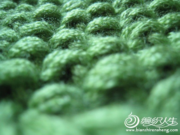 2011.11.24 绿色大衣 006.jpg