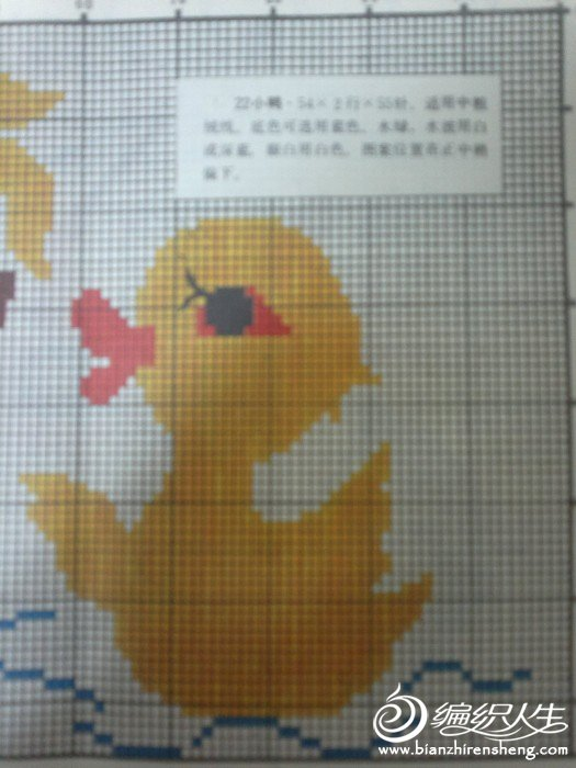 小鸭戏水.jpg