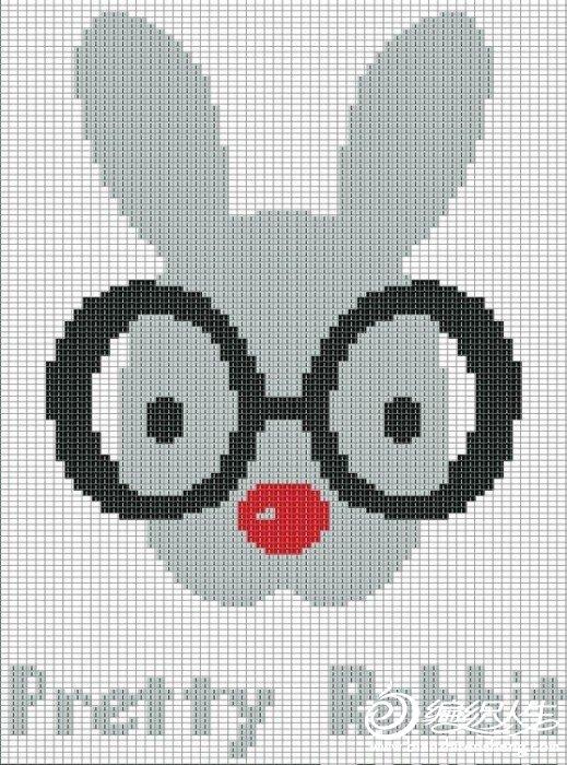 眼镜兔.jpg