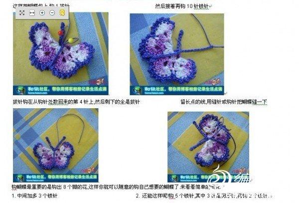 蝴蝶图解5.jpg