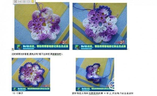 蝴蝶图解3.jpg