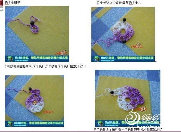蝴蝶图解1.jpg