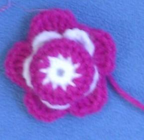 花朵扣子.jpg
