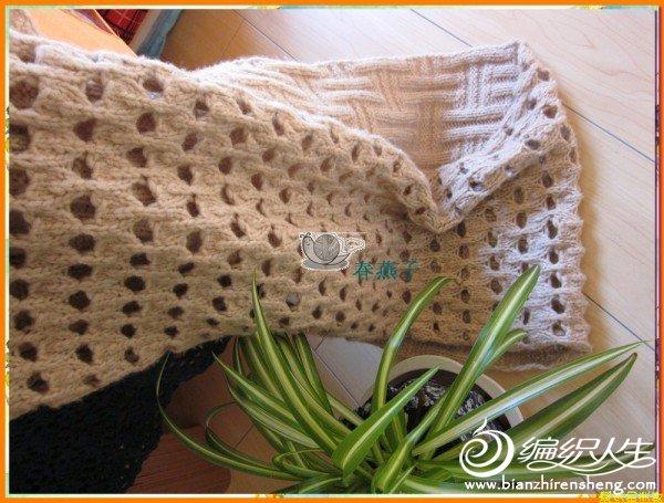 春燕子-米围巾.jpg