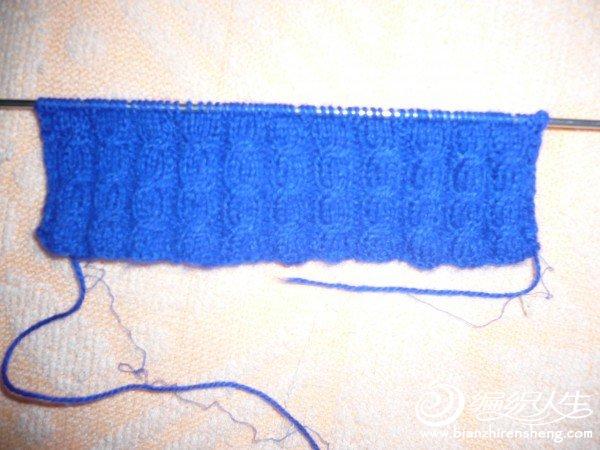 蓝衣袖口.JPG