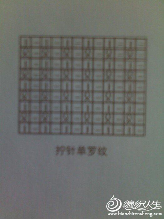 20111202331.jpg
