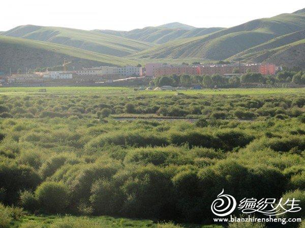 皇城草原美景