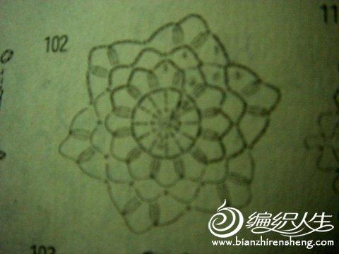 单元花.jpg
