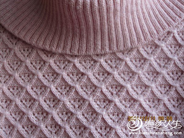 粉色格格毛衣照片 021.jpg