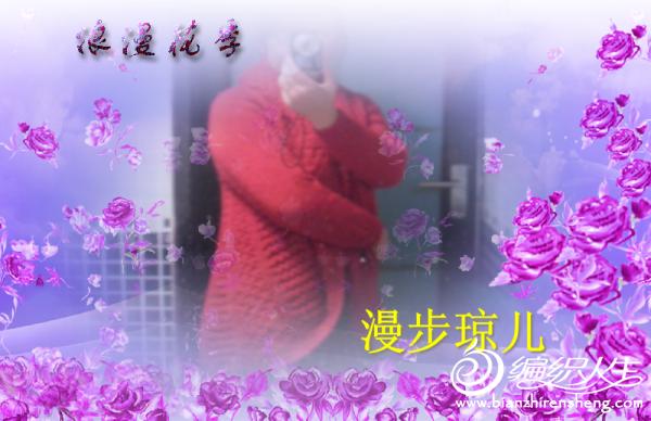 赛凤蝶2.jpg