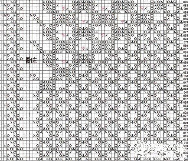 长孔雀左图1.jpg