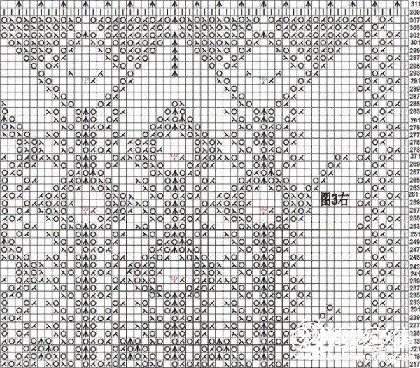 长孔雀右图3.jpg
