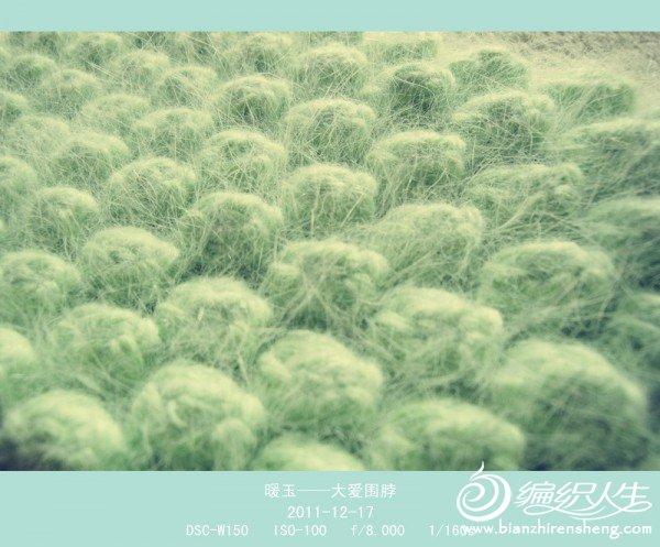 DSC02500_副本.jpg