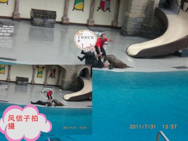 psu (36)_副本.jpg