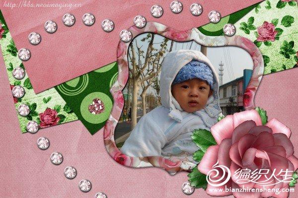 SAM_0103.jpg