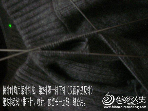 DSC00487_conew1.jpg