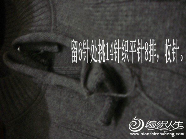 DSC00490_conew1.jpg