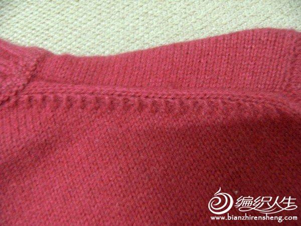 红肩2.jpg