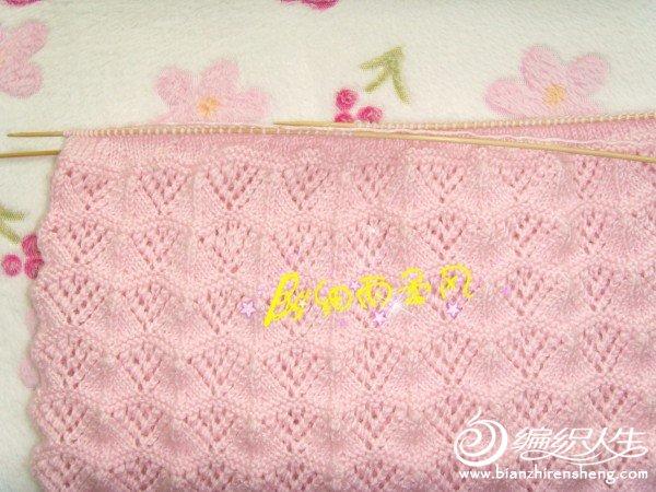 SNV36832_副本.jpg