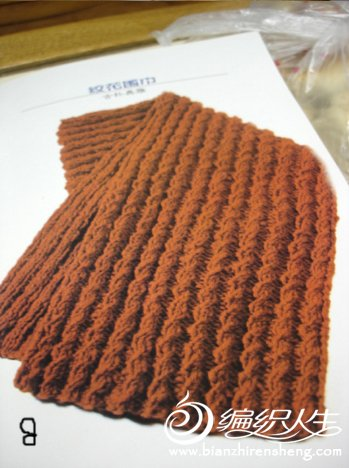 谁能告诉我这款围巾的织法。谢谢了!