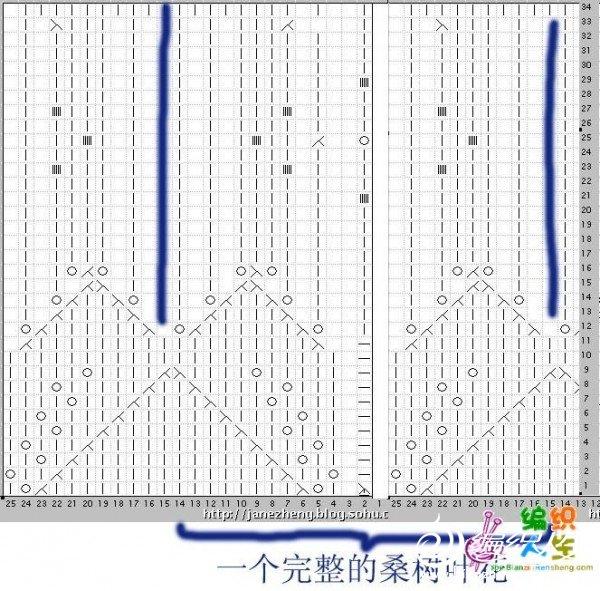 桑树叶花图解2.jpg