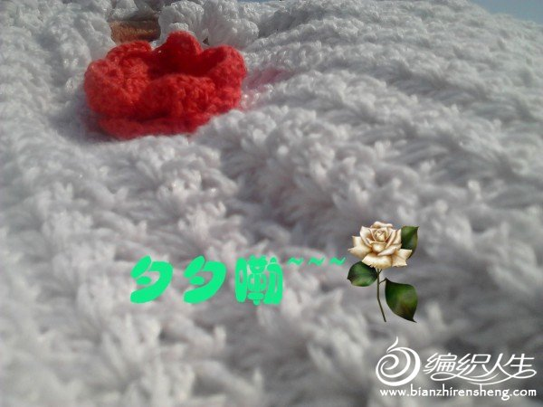 img_20120105_135429_副本.jpg