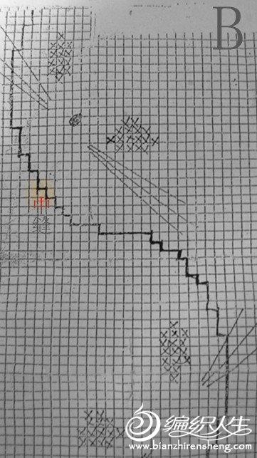 红图解B.jpg