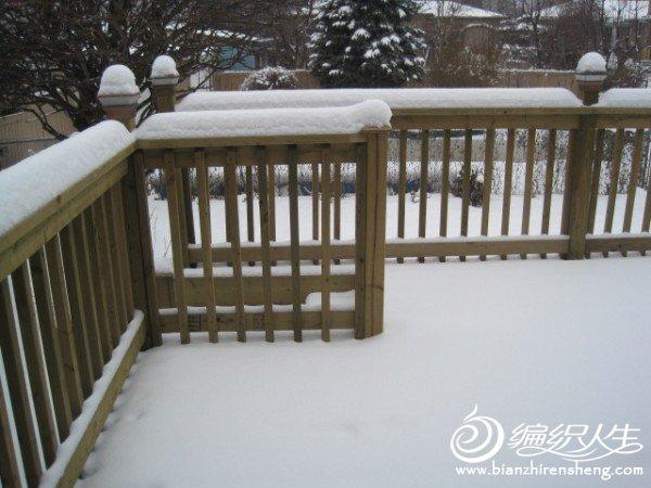 2011多伦多第一场大雪.jpg
