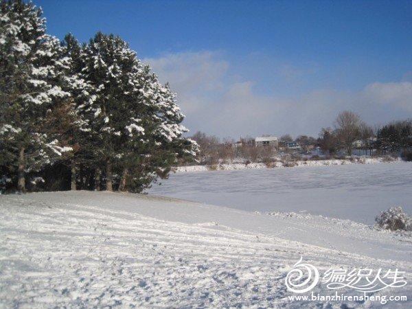 2011多伦多第一场大雪 (3).jpg