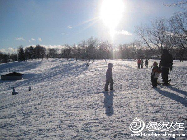 2011多伦多第一场大雪 (4).jpg