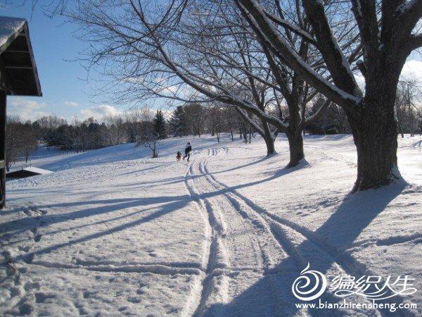 2011多伦多第一场大雪 (13).jpg