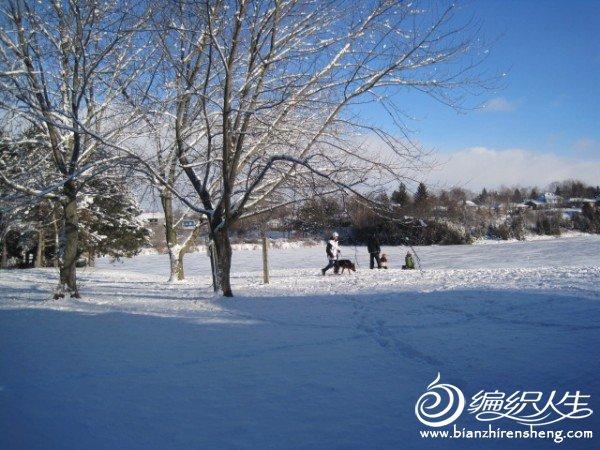 2011多伦多第一场大雪 (15).jpg