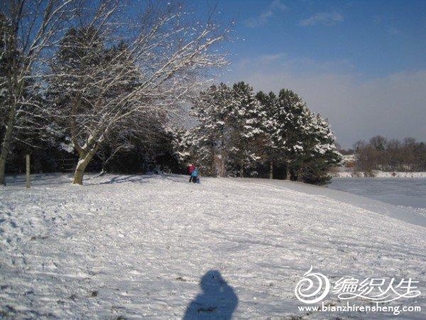2011多伦多第一场大雪 (18).jpg