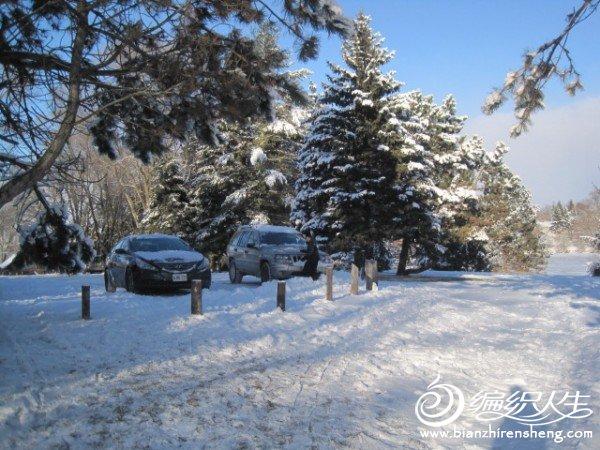 2011多伦多第一场大雪 (22).jpg